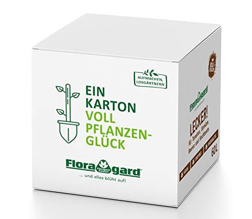 Floragard Bio-Erde Lecker Gemüse-und Hochbeeterde in der Box, 60 Liter