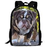 Large Backpack,Adjustable Pack College,Unisex Shoulder Book Bags,Casual Rucksack Cute Shar Pei Green Eyes Laptop Bag,Oxford Travel Bag,Outdoor Dayback,Kids Adult School Bag