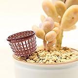 Yanhonin 10pcs Outil de bonsaï, boîte de Panier de Couverture d'engrais, Pot de pépinière Portable