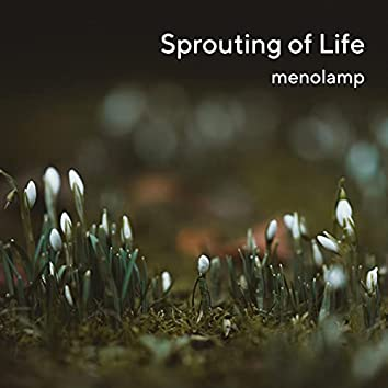 Sprouting of Life