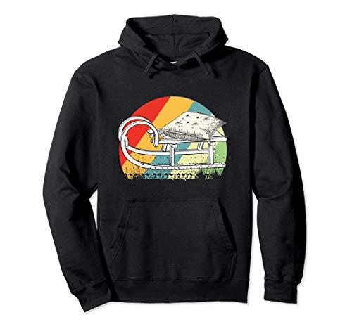 Schlitten - Schlittenfahren Retro Rodeln Geschenk Pullover Hoodie