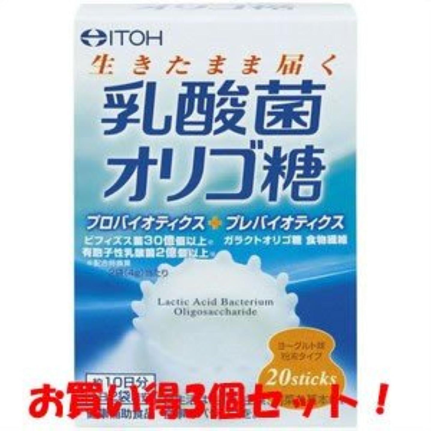 世界最大限生産的【井藤漢方製薬】乳酸菌オリゴ糖 40g(2g×20スティック)(お買い得3個セット)