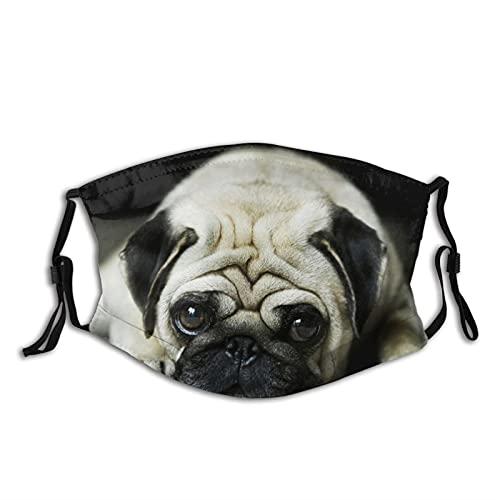 Funny French Bulldog Dog Face Mask With Filter Pocket Washable Reusable Face Bandanas Balaclava With 2 Pcs Filters