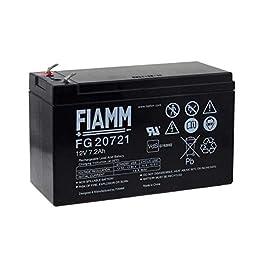 FIAMM Batterie au plomb rechargeable FG20721 Vds