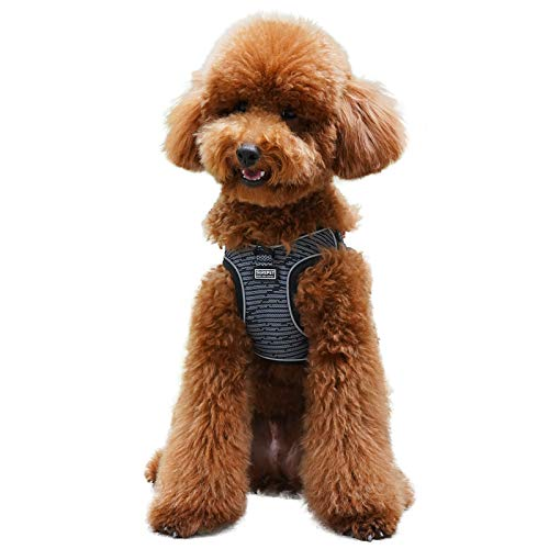 Aumuca No Pull Dog Harness Reflective Step in Small Dog Harness Easy Control Handle for Walking Dog Harness Medium Soft Mesh Adjustable Dog Harness for Small Medium Large Dogs