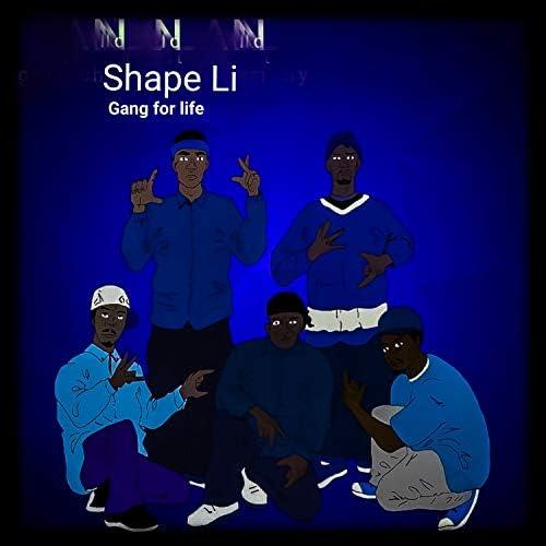 Shape Li