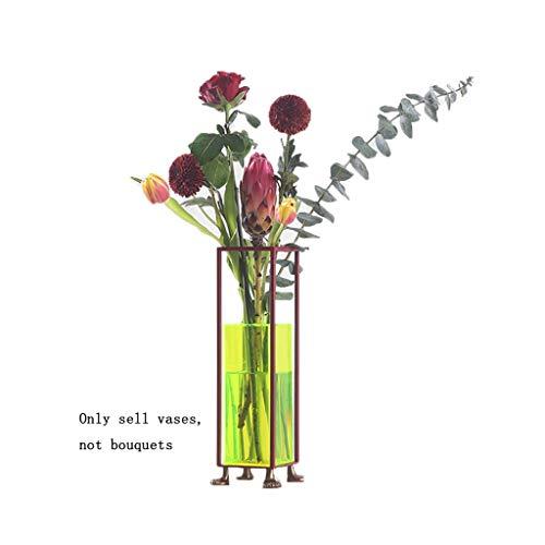 Floreros para flores, soporte botánico, acrílico, creativos, simples, arreglos florales, flores hidropónicas, escritorio, sala de estar, encimera pequeña, Hierro, acrílico y ABS., Rojo, 11*11*33.5cm