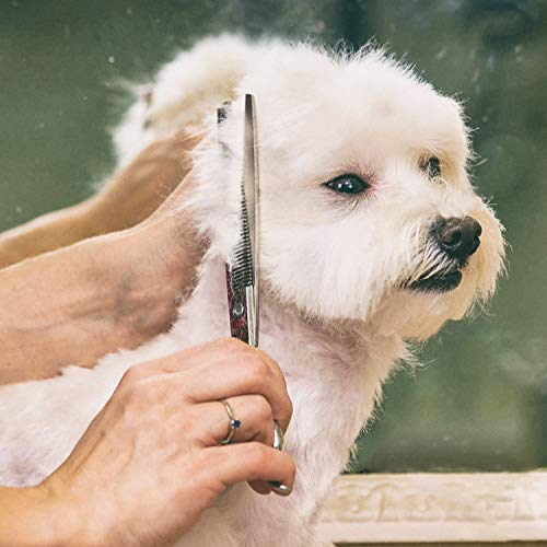 Gimars 4CR Stainless Steel Dog Grooming Scissors Kit with Safety Round Tip, Heavy Duty Titanium Coated Pet Grooming Trimmer Kit - Thinning, Straight, Curved Shears Comb for Long Short Hair for Cat Pet