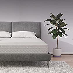 Signature Sleep Contour 8-Inch Independently-Encased Coil Mattress