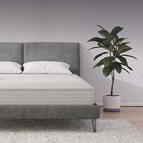 Signature Sleep Contour 8' Reversible Mattress, Independently Encased Coils, Bed-in-a-Box, Queen