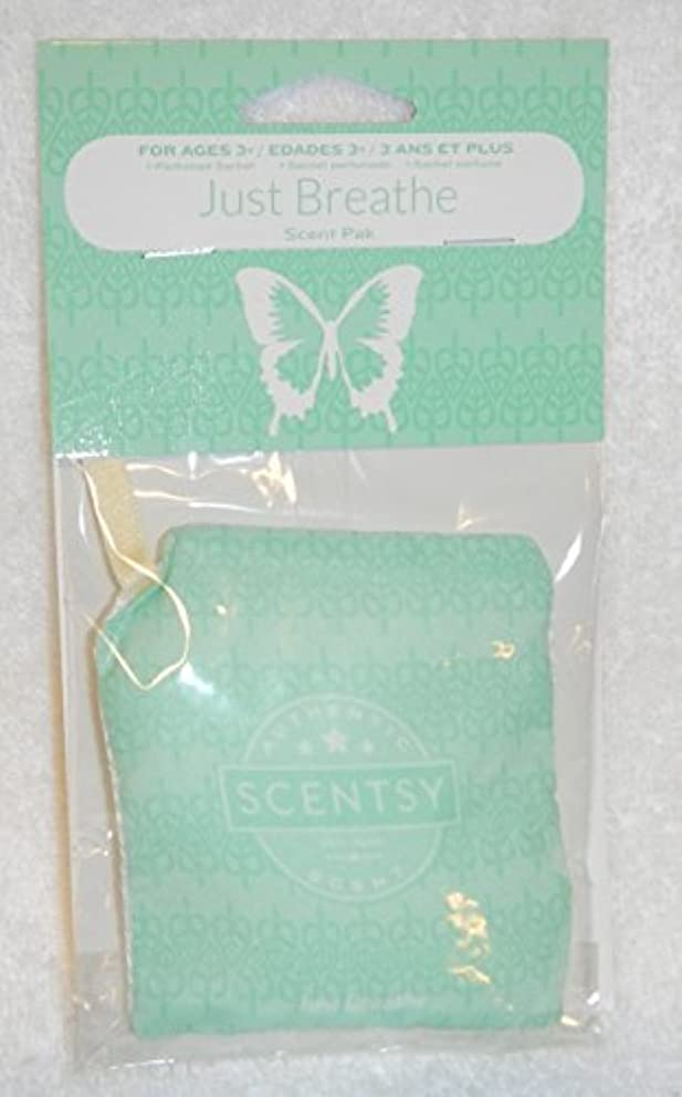 Scentsy Scent Pak for Scentsy Buddy