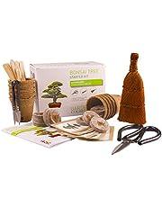 Kweek je eigen bonsai - kweek eenvoudig 5 soorten bonsai-bomen met onze complete, beginnersvriendelijke starterzaadset - cadeauset, uniek cadeau-idee. Premium cadeauset