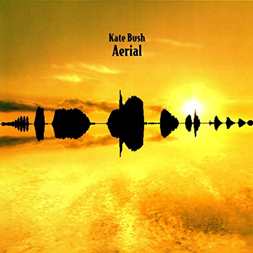 Aerial (2018 Remaster) [Vinyl LP]