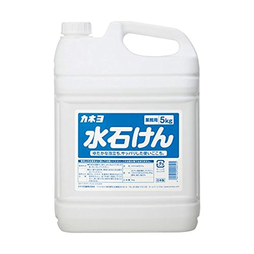 選ぶ腐敗解説【まとめ買い】カネヨ水石けん5kg 5kg ×2セット
