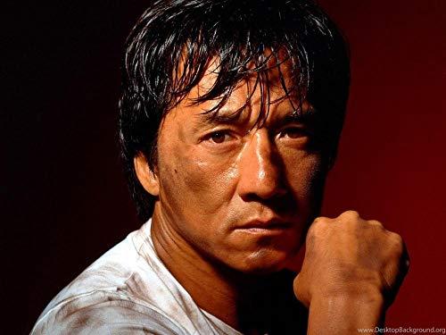YHNM Puzzle de 1000 Piezas para Obra de Arte de Juego de Rompecabezas para Adultos/Póster Jackie Chan Kung Fu/para Regalos de niños y Adultos(75x50cm)