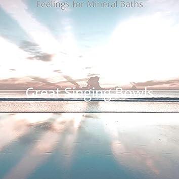Feelings for Mineral Baths