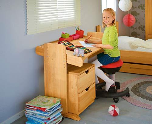 BioKinder 22131 Julia Schreibtisch Kinderschreibtisch verstellbar aus Massivholz Erle