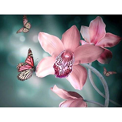 5D DIY Diamond Painting Kits for Adults Full Round Drill Rhinestone Embroidery Cross Stitch Arts Craft for Home Decor Orchids & Butterflies 15.7x11.8 in by Megei