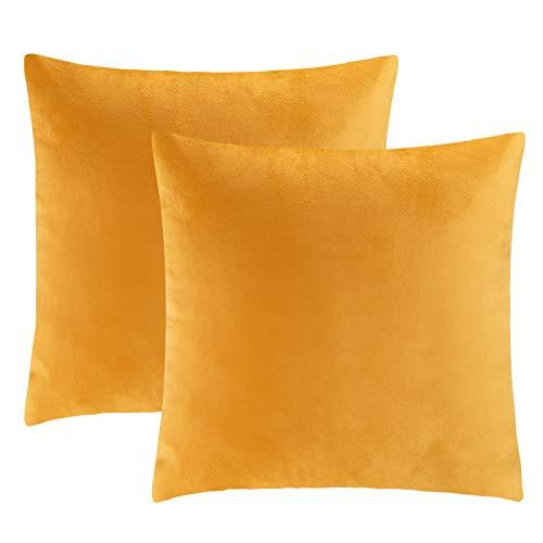 eletecpro Kissenbezug 50x50cm, 2er Set Samt Kissenhülle mit Verstecktem Reißverschluss, Gelb Zierkissenbezüge für Sofa und Terrasse Wohnzimmer,Schlafzimmer, Büro in großer Farb- Größenauswahl