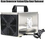 FCH-GY Generador de ozono removedor de Olor Natural purificador de Aire Confort Limpiador Comercial de Acero Inoxidable Desodorante y esterilizador Profesional de ozonizador - 10g