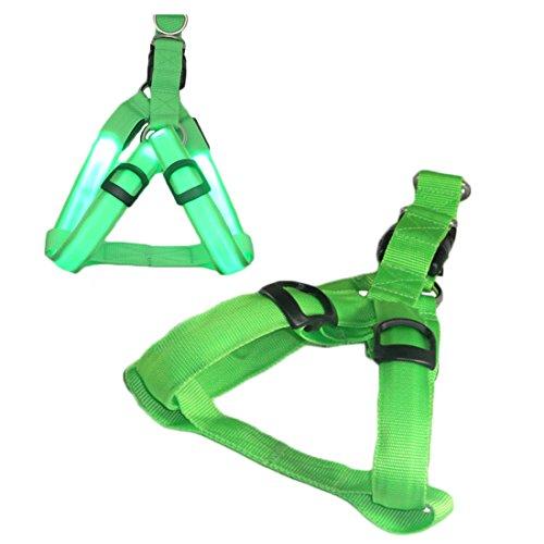 LED Licht Hundegeschirr Verstellbare Leuchtend Pastell Brustgeschirre Laufgeschirre Vest Sicherheits Geschirr USB Aufladbar Harness Gassigehen bei Nacht für Kleine Hunde Welpen (XS, grün)