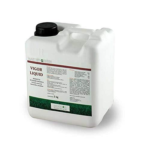 Bottos Concime Fertilizzante per Prato Vigor Liquid - 5 Lt