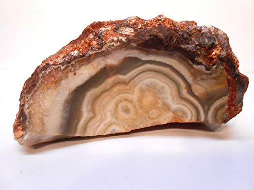 Rockhound's 1st Choice Flor de Durazno Agate (Flower of Peach) Lace Agate Rough Specimen #2 for Exhibit or Slabs & Cabs
