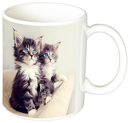 MasTazas Gatitos Gatos Kittens Cats N Tasse Mug