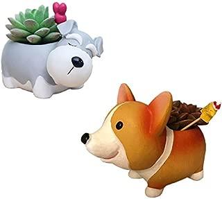 Everyday Better Life 2 PCS Set Cute Cartoon Animal Shaped Succulent Cactus Flower Pot/Plant Pots/Planter/Container for Home Garden Office Desktop Decoration (Corgi Dog(Style A)+Schnauzer)