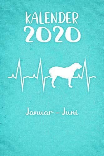 Kalender 2020: Türkiser Tageskalender Alabai Herzschlag Hunde 1. Halbjahr Januar Juni ca...