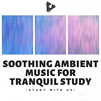 Soothing Ambient Music for Tranquil Study