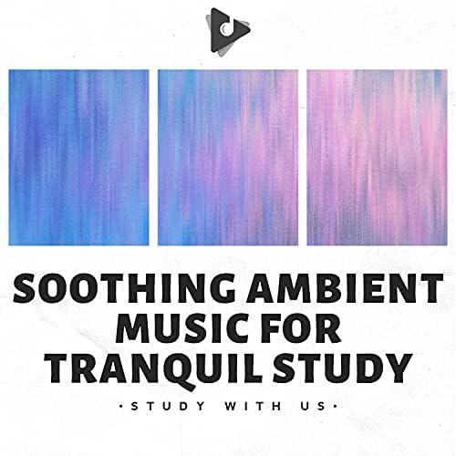 Study With Us & Study Alpha Waves