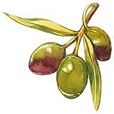 dekodino Pegatina de pared fruta acuarela aceitunas con ramita cocina