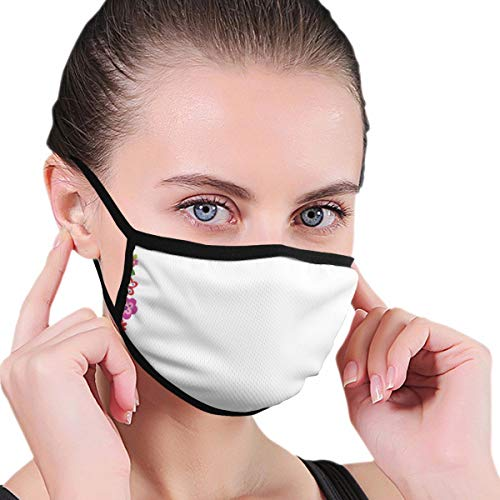 Mouth Face Mask Anti Breathable Filter Dust Absorb Sweat Washable Reusable Masks for Cycling Camping Ski Travel Outdoor,Flourishing Flowers Border Ornaments Fantasy Garden Butterflies Joy Fun Nature
