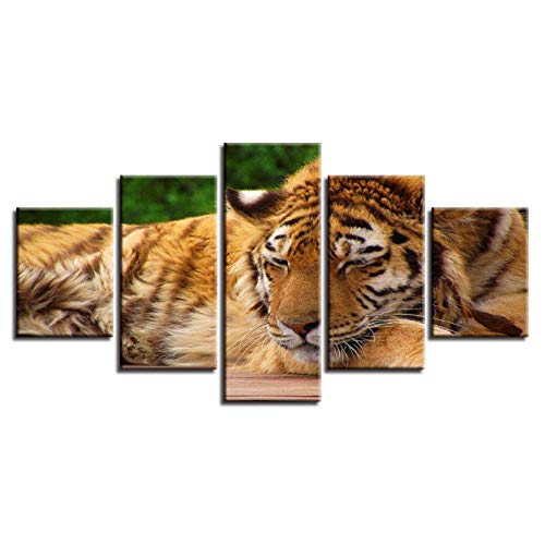 PrintWUHUA Cuadros Decoracion Animal Gentle Tiger Sleeping Poster Cuadros Decoracion Salon Modernos 5 Partes (W) 200Cmx(H) 100Cm