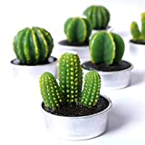 COCOMOON Cactus Candles, Artificial Succulents Decorative Tea Light Candles 12 Pcs,Perfect for Birthday Wedding Party Home Decor (6 Cactus Candles)