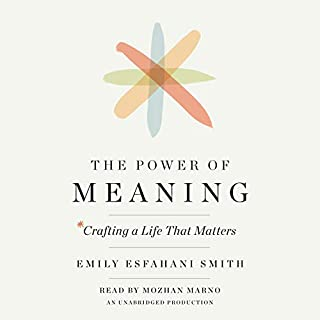 The Power of Meaning audiobook cover art