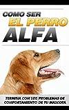 Como entrenar tu mascota: Cómo ser el Perro Alfa y terminar con los...