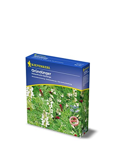 Gründünger Hülsenfruchtgemenge - 1 Karton/ 1 kg