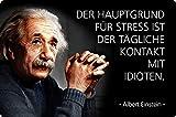 Placa metálica de 20 x 30 cm, texto en alemán 'Der Hauptgrund für Stress Zitat Einstein