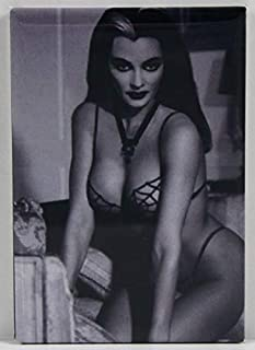 Best lily munster pin up Reviews