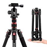 Bonfoto B690A 54' Compact Lightweight Camera Travel Tripod with Carrying Case 360 Degree Panorama Ball Head for Canon Nikon Sony Olympus DSLR Cameras and Cell Phones …