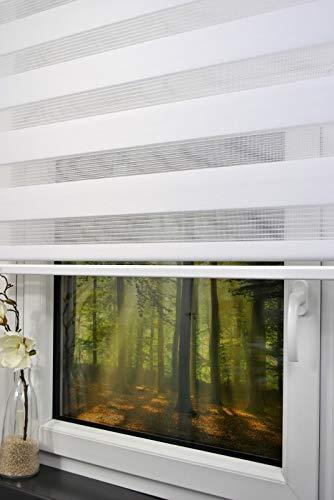 Doppelrollo 200 cm breit 170 cm lang Farbe weiß mit breiter Beschwerung + geschlossener Kassette + Kettenzug Alternative zu Gardine oder Plissee Duo Rollo