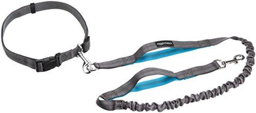 AmazonBasics - Correa para perro, elástica, asa doble, 1,21 m, color azul