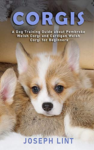 Corgis: A Dog Training Guide about Pembroke Welsh Corgi and Cardigan Welsh Corgi for Beginners (English Edition)