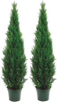 Silk Tree Warehouse Two 5 Foot Outdoor Artificial Cedar Topiary Trees Potted Plants Two Peace Construction