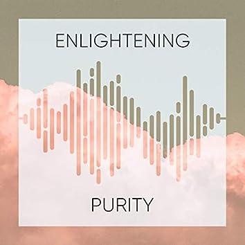 Enlightening Purity, Vol. 2