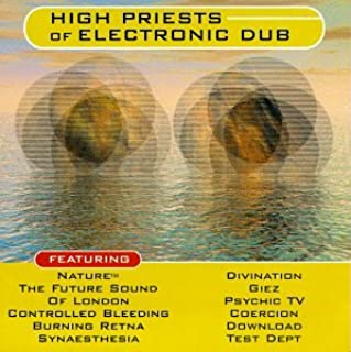 High Priests of Electronic Dub