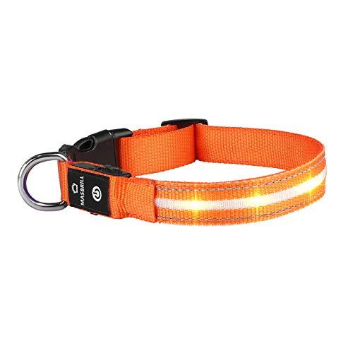 MASBRILL LED Leuchthalsband für Hunde USB Aufladbar Wasserdichtes Hundehalsband Leuchtend Längenverstellbarer Haustier Sicherheit Halsband mit 3 LED-Modi für Klein Mittlere Große Hunde, Orange M