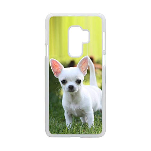 Jbs Kawiaa Shop Tener con Chihuahua Usar En S9 Samsung Ni?o Conchas De...